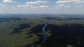 Jerman Pangkas Dana 35 juta euro untuk Hutan Amazon Brasil