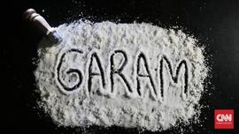 Luhut Usul ke Jokowi Setop Impor Garam