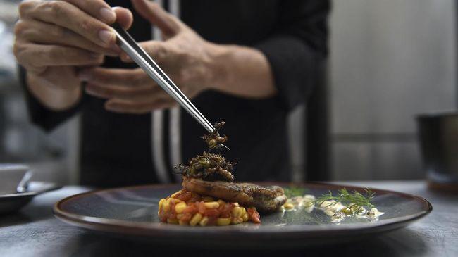 Sajian Ekstrem Serangga Saus Pesto di Bangkok