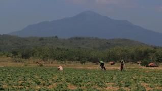 Reforma Agraria Jokowi-JK Dianggap Belum Jamin Kesejahteraan