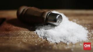 PP Impor Garam Terbit, Industri Dipastikan Tak Terhenti