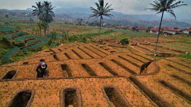 BI Ramal Inflasi Oktober 0,03 Persen Ditopang Panen Gadu
