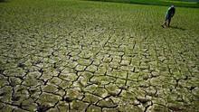 2017 Jadi Tahun Kedua Paling Panas yang Pernah Terekam