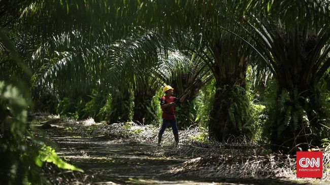 Tahun Politik, Kemenperin Ramal Industri Agro Tumbuh 7 Persen