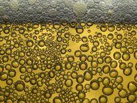 Kadang hal yang sederhana sekalipun seperti buih dalam minuman bir dapat juga memicu trypophobia. (Foto: Thinkstock)