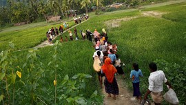 Akan Dipulangkan, Ribuan Rohingya Melarikan Diri