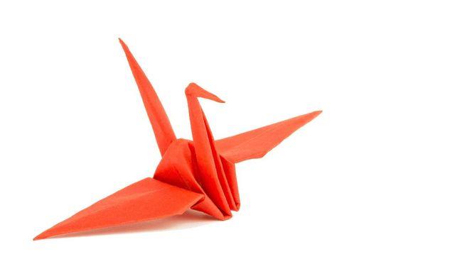 Tak Cuma Dipandang, Kini Origami Bisa Dimakan