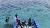Untuk menikmati keindahan bawah laut Morotai, sudah ada operator pemandu selam dan snorkeling yang menawarkan jasa dan penyewaan alat selam sehingga turisyang berkunjung tak perlu repot untuk membawa peralatan menyelam.