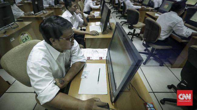 Pelamar CPNS Baru Bisa Pilih 224 Instansi Pemerintah