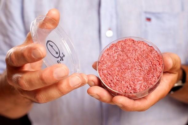 Ini 10 Makanan Paling Ekstrim di Dunia, Dari Paling Panjang hingga Paling Beracun