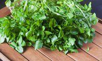 Karena sayuran memiliki kandungan air yang tinggi, mereka mudah dicerna. Ini berarti tubuh Anda tidak harus bekerja keras dan tetap segar. Foto: Getty Images