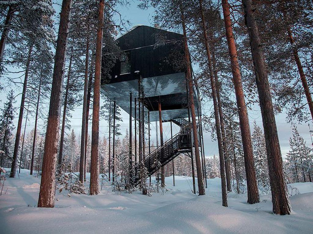 Begini penampakan rumah pohon di kawasan Swedia Utara. Istimewa/Johan Jansson/Boredpanda.