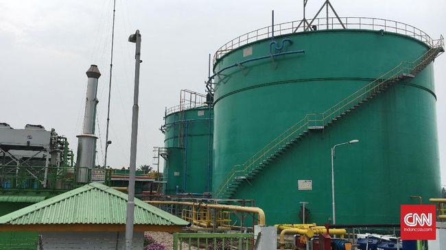 Kelebihan Produksi Listrik Biogas, Sinarmas Ingin Jual ke PLN