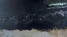 Buntut Petaka Minyak Tumpah di Teluk Balikpapan