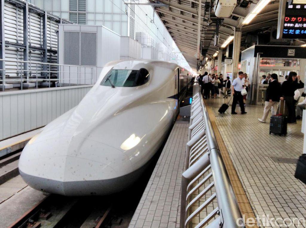 Baik itu yang turun di stasiun Tokyo maupun yang akan berangkat dari Stasiun Tokyo menuju kota-kota seperti Shinagawa, Yokohama, Nagoya, Kyoto, dan Osaka.