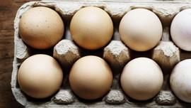 Cara Mudah Mendeteksi Telur Busuk