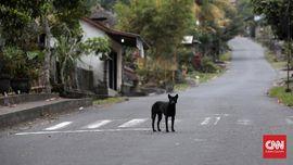 FOTO:  'Desa Mati' di Sekitar Gunung Agung