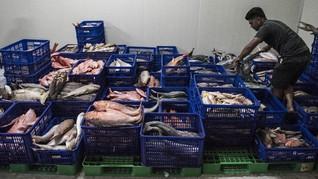 Ekspor Perikanan RI Tumbuh Lebih Kencang Dibanding China