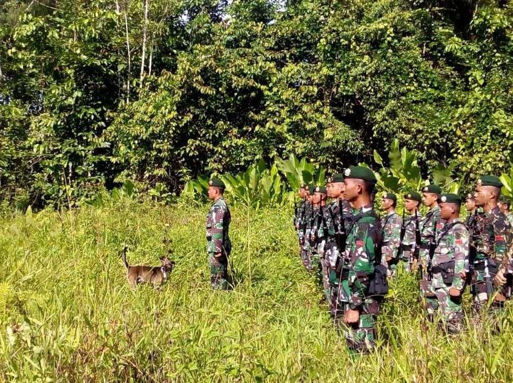 Kegiatan Upacara HUT TNI ini dilaksanakan oleh Kompi B dengan jajaran Posnya sekitar 30 prajurit terbagi dari jajaran Pos Kaliasin, Pos Bewan Baru dan dari Pos Bewan Lama di bawah Komandan Kompi Kapten Inf Fajar Eko YL. (Penkostrad).