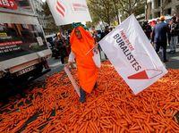 Tahun 2015, mereka juga mengirim wortel ke Kementerian Keuangan untuk memprotes plain packaging atau kemasan polos untuk rokok. (Foto: REUTERS/Philippe Wojazer)