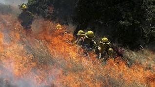 Kebakaran Hutan Hingga Arktik, Swedia Minta Bantuan Uni Eropa