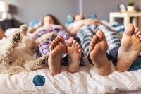 Tidak bisa tidur tanpa hewan peliharaan di samping Anda? Kebiasaan ini mungkin bisa mengganggu pasangan Anda. Jika demikian, maka kompromi dan komunikasi diperlukan agar kebiasaan ini tidak berdampak negatif pada hubungan ranjang. Di sisi lain, melarang hewan peliharaan tidur bersama dalam satu ranjang juga baik untuk memastikan kebersihan tempat tidur. Foto: Thinkstock