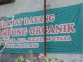 Mengelola Sampah Di Kampung Organik