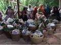 Guar Bumi, Wisata Budaya Ritual Sedekah Bumi di Majalengka