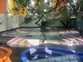 VIDEO: Melihat Lantai 7 'Surga Dunia' Hotel Alexis