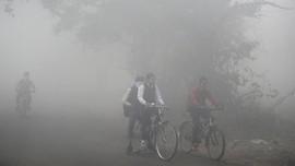 Riset: Polusi Udara Bunuh Lebih Banyak Orang Dibanding Corona