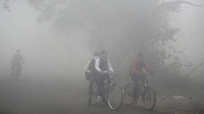 Polusi Udara Disalahkan atas Penurunan Kecerdasan Seseorang