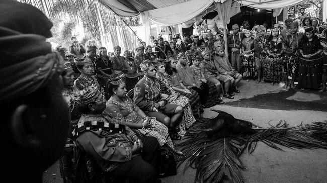 Di sana bahkan masih ada kerajaan Kulawi, sebuah kerajaan kecil yang rajanya disebut Magau atau Sangkala. Mereka juga masih mempertahankan adat istiadat, termasuk pernikahan. (ANTARA FOTO/Fiqman Sunandar)
