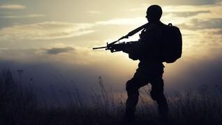 Kodam Cenderawasih Tanggapi Ancaman OPM: Kami Siap Perang