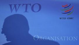 Indonesia Menang Sengketa Kertas dari Australia di WTO