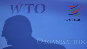 WTO: Pembatasan Dagang antar Negara G20 Naik 3,5 Kali Lipat