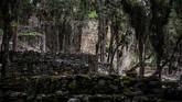 Suku Chachapoya pun diketahui telah punah sejak abad ke-18 Masehi. Mereka dikenal sebagai salah satu jejak genetis yang berbeda dari penduduk asli Peru modern. (AFP PHOTO / Ernesto BENAVIDES)