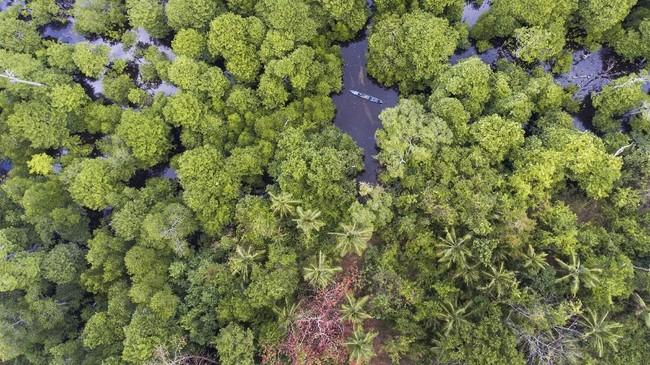 Pulau Kaledupa diambil dari kata 'Kauhedupa' memiliki arti kayu dupa,berada di lingkungan yang lebih tenang dan seluruh pulau lebih hijau dibandingkan dengan pulau yang lain di Wakatobi.(ANTARA FOTO/Rosa Panggabean)