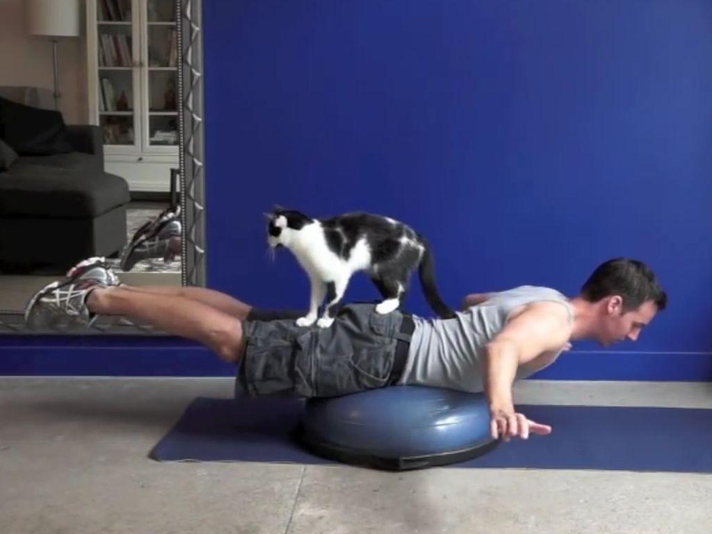 Pria Ini Praktikkan Cara Olahraga Bareng Kucing Kesayangan