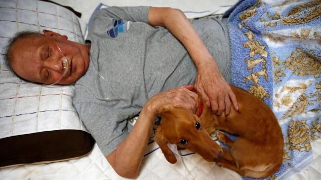 Dengan dirawat di rumah, Mitsuru Niinuma juga bisa bermain dengan anjing piaraannya Rin. (REUTERS/Kim Kyung-Hoon)