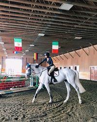 Oh ya, selain berolahraga. Bella Hadid suka berkuda juga lho. Ia sudah terlatih menunggangi kuda sejak usia 2 tahun. Foto: Instagram @bellahadid