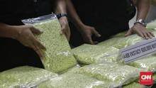 Kemendikbud-BNPT-BNN Sudah Memetakan Sekolah Rawan Narkoba