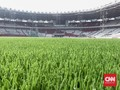 Pesona Rumput Stadion GBK Jelang Asian Games 2018