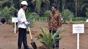Jokowi Restui Dana Sawit Digunakan untuk 'Subsidi' Biodiesel