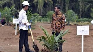Jokowi Restui Dana Sawit Digunakan untuk Subsidi Biodiesel
