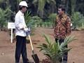 Pinjam KUR, Petani Sawit 'Gratis' Bayar Cicilan Lima Tahun