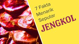 Tujuh Fakta Menarik Seputar Jengkol