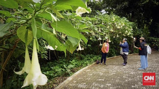 Objek wisata yang populer dikunjungi turis ini merupakan kediaman Puteri Thailand Srinakarindra, ibu dari mendiang Raja Bhumibol Adulyadej.
