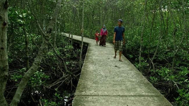 Wisatawan berwisata di Laguna Mangrove Pulau Untung Jawa, Kepulauan Seribu, Jakarta, Senin (20/11). ANTARA FOTO/R. Rekotomo/17.