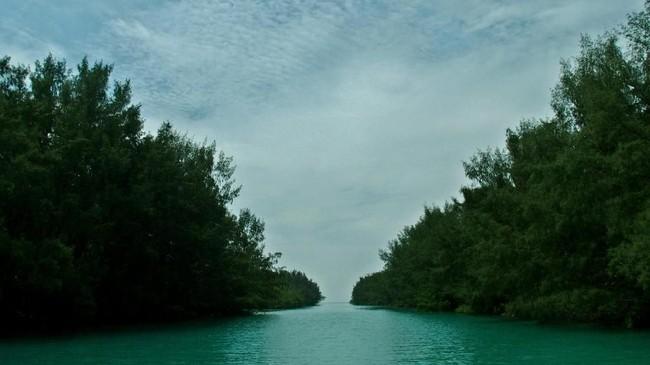 Beberapa pulau yang menjadi destinasi wisata di Kepulauan Seribu di antaranya adalah Pulau Pramuka, Pulau Air, Pulau Semak Daun, Pulau Pari dan Pulau Untung Jawa. (ANTARA FOTO/R. Rekotomo)