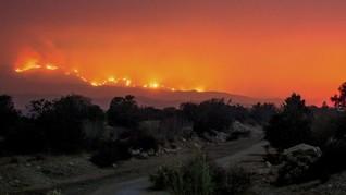 Kebakaran California Lebih Luas dari Jakarta-Bandung
